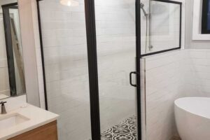 Matte Black Shower Door