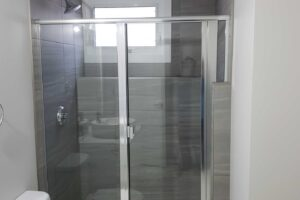 Silver Shower Door